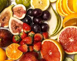四季折々の食材選りすぐりの旬 イメージ画像